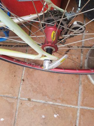 bici clásica profesional