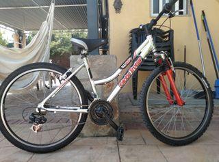 Bicicleta Globetrotter Alu 726 Sy