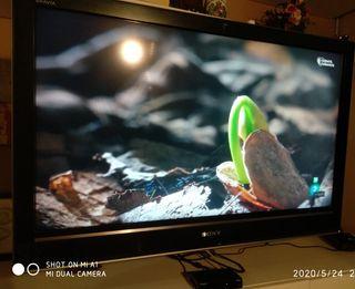"TV Sony Bravia 40"" con TDT Engel"
