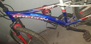 "bicicleta medida 24"" BH Oregón"