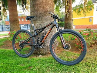 Specialized EPIC SWORKS AXS EAGLE