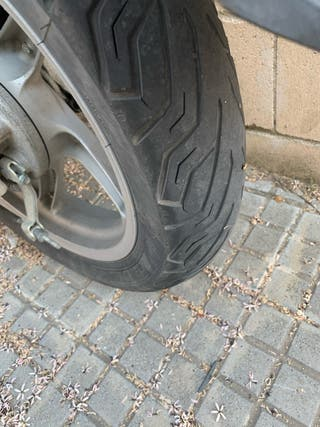 Neumáticos sh / dylan