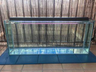 Acuario/urna/pecera 200 litros