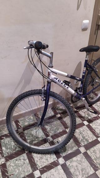 Bici MTB 26