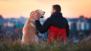 Paseo y cuido perros