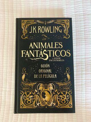 Libro Animales Fantásticos y llavero