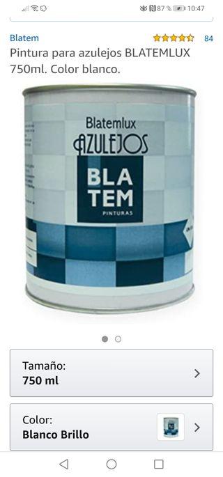 Pintura esmalte azulejos blanco brillo.