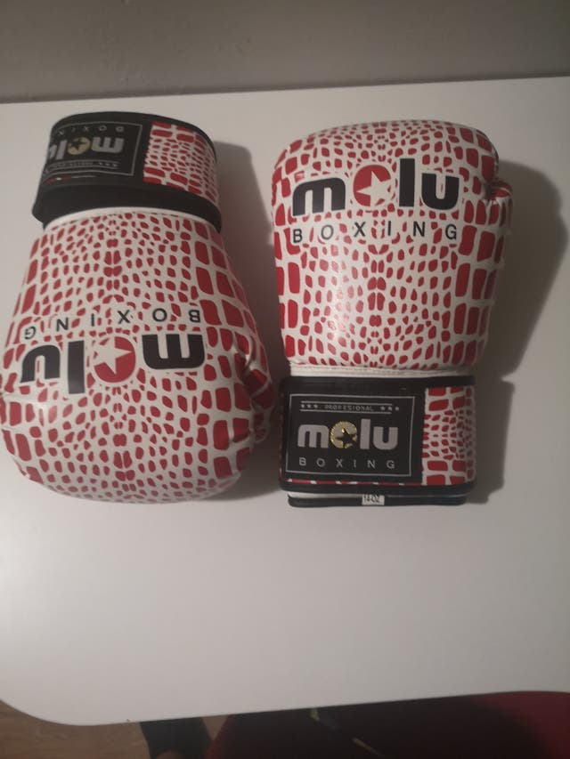 Guantes Molu profesional Boxing 14OZ
