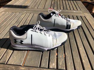 Zapato Golf