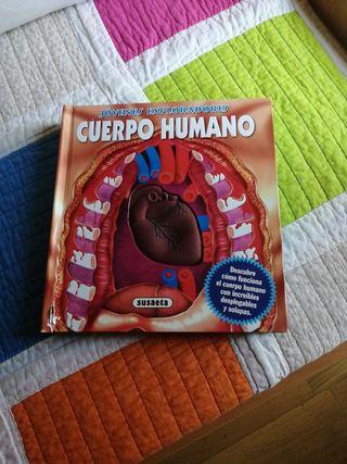 libro infantil de el cuerpo humano