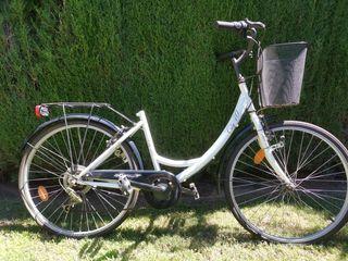 bicicleta de paseo, adulto