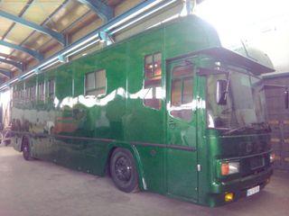 CAMION DAF TRANSPORTE CABALLOS