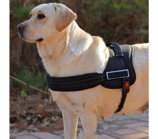 Arnés Ajustable De Perro Acolchado Para El Adiestr