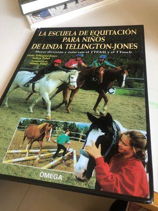 La escuela de equitación para niños