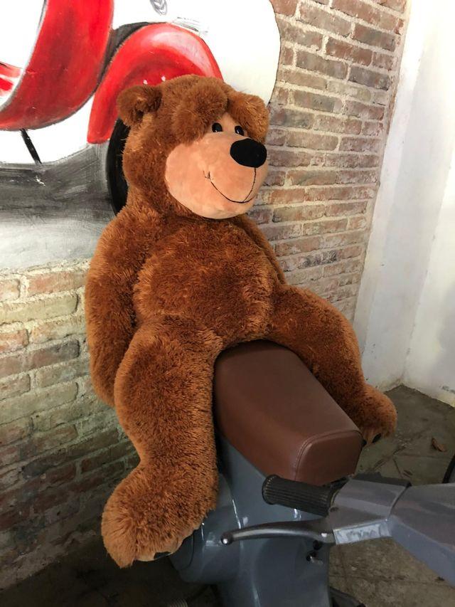 Oso Teddy XL
