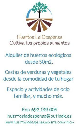 alquiler de huertos eco