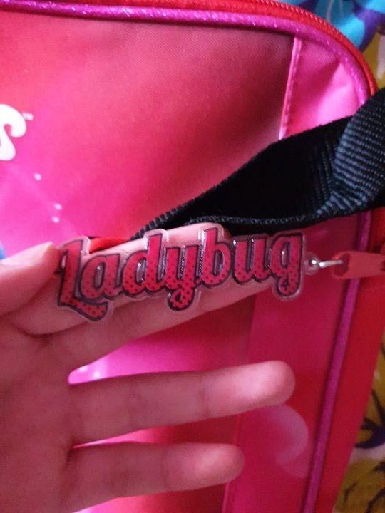 Funda para ordenador de Ladybug