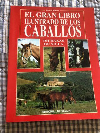 El gran libro ilustrado de los caballos