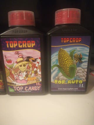 Lote de productos top crop
