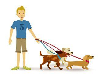 Paseador de perros. Más cuidado por vacaciones.