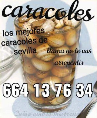 CARACOLES GUISADOS