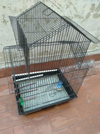 jaula para pájaros y mascotas