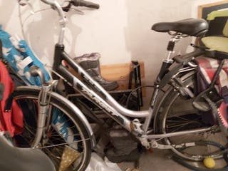 bicicletas Holandesas de paseo