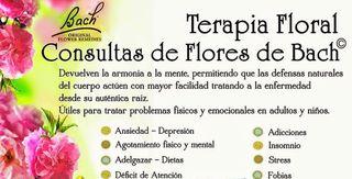 ***Terapeuta Floral Flores de Bach***