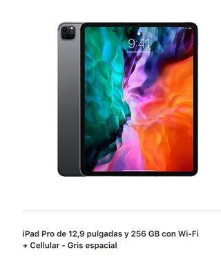 Ipad Pro 256 GB WI-FI +cellular