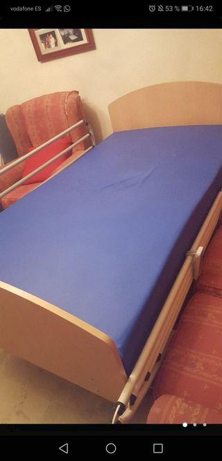 cama elevadora ortopedica
