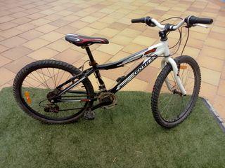 "bici COLUER RANDY 24"""