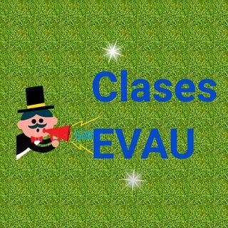 PROFESORA CLASES EVAU
