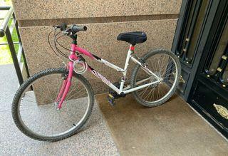 Bicicleta de montaña Boomerang Crossway