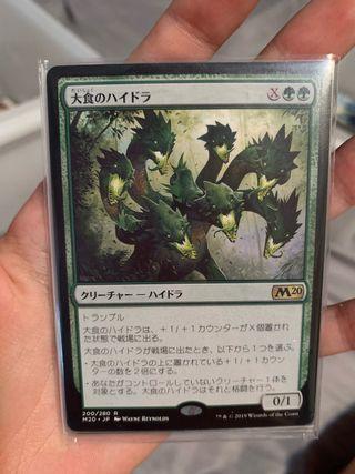 Voracious Hydra x4 - Mtg