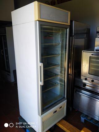 Isa congelador vertical industrial