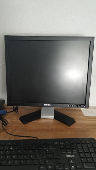 Pantalla PC monitor ordenador Dell