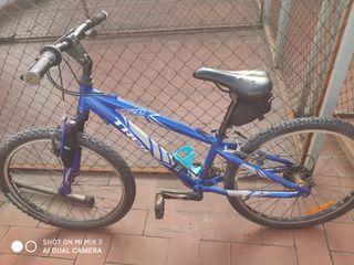 "Bicicleta Trek 24"""