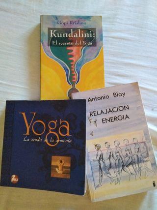 Lote de libros de yoga