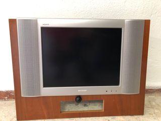 Televisión plana con tdt