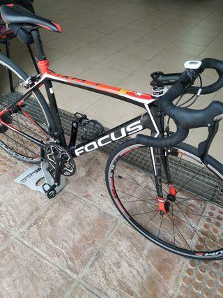 bicicleta carretera focus kayo