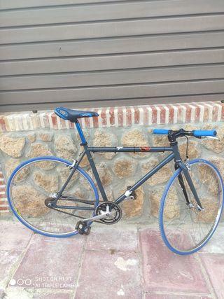 Bicicleta Exclusiva (tipo FiXiE)