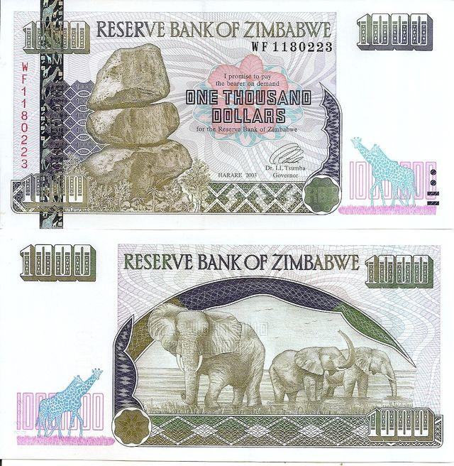 ZIMBABWE BILLETE 10000 DOLARES 2003 P 12
