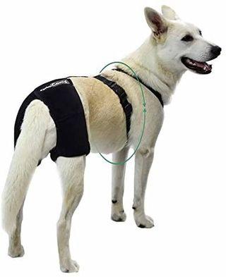 arnés cadera perro, marca ortocanis