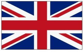 lecciones de inglés de profesor británico