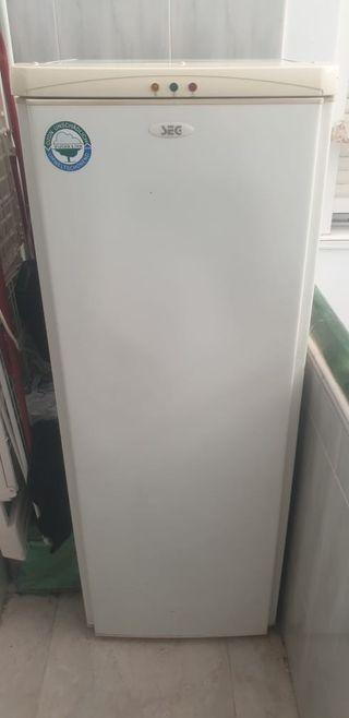 Congelador vertical marca (SEG)