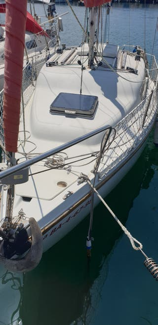 barco velero puma23