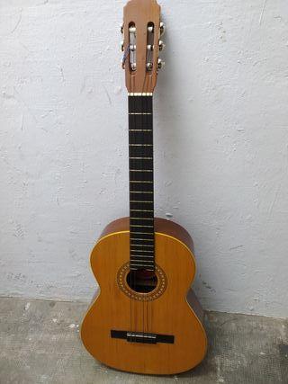 Guitarra con funda