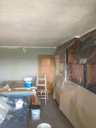 Pintor profesional y económico