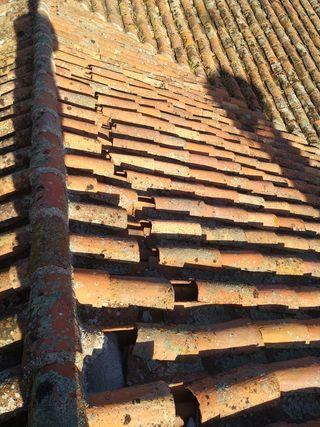 tejado goteras jose