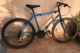 2 bicicletas (hombre y mujer)